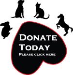 SBTH_ICON1 donate 2