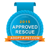 Approved-Rescue_Blue-Badge